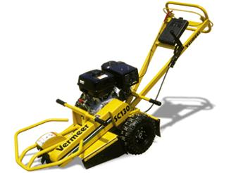 Where to find Stump Grinder 13HP in Bensenville