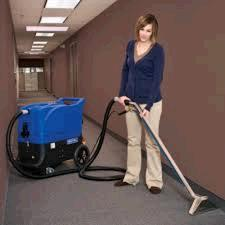 Where to find Carpet cleaner  HOT  extractor 13 gal. in Bensenville
