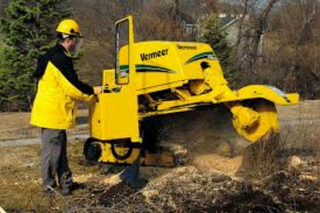 Where to find Stump grinder 60hp self propelled tracks in Bensenville